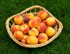 Чем полезны персики - символ долгожительства?